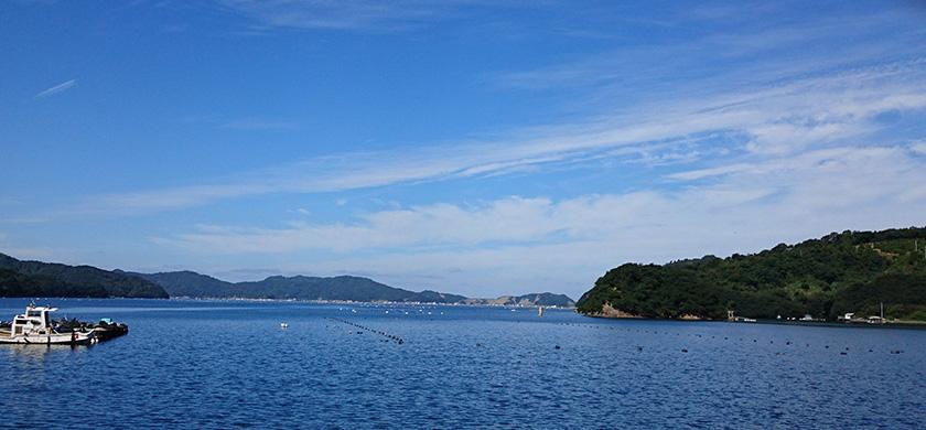 page-main-uwajima02