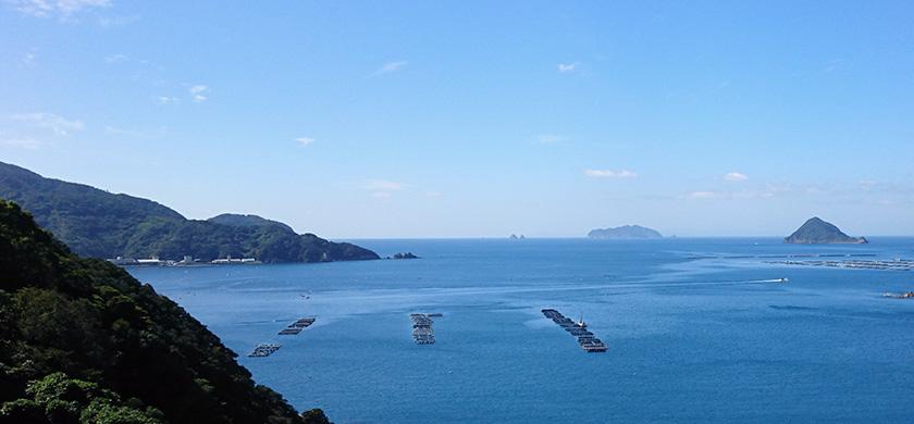 page-main-uwajima03
