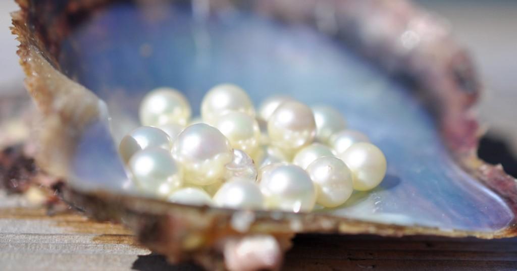 7真珠は自然が生みだした宝石!! 自然に真珠ができる仕組みを解説します。