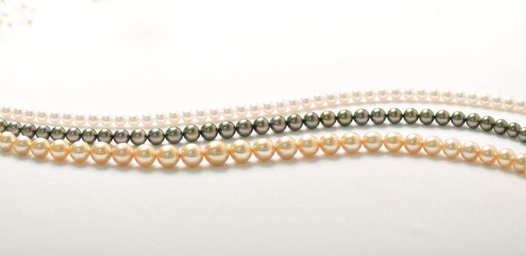 9大型の真珠が魅力!! クロチョウ真珠とシロチョウ真珠のこと、ご存知ですか